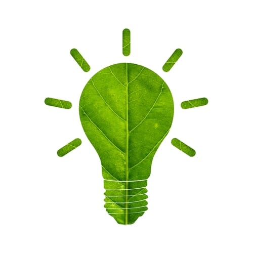 Going green is a hot topic today. It is an issue that many people are very passionate about, and it has led a number of businesses to make an effort to go green as well.