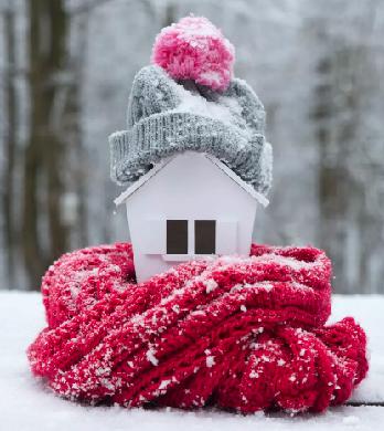 birdhouse in the winter